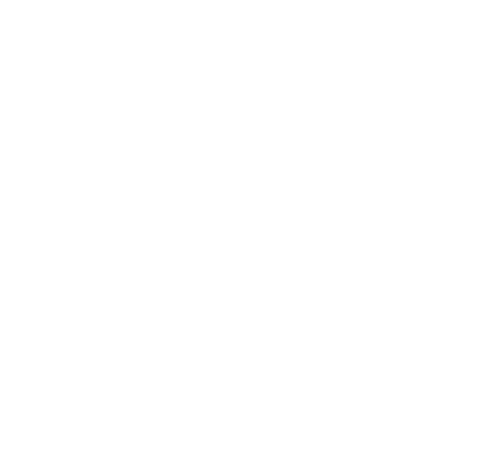 Electric Days